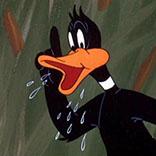 po_Duck-Daffy2