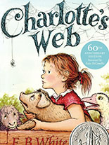 po_Web-Charlotte
